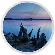Round Beach Towel featuring the photograph Spikes In Blue by Davor Zerjav
