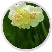 Spingtime Daffodils Round Beach Towel
