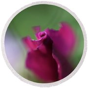 Spinning With Rose 2 Round Beach Towel