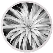 Round Beach Towel featuring the photograph Spiral Black And White by Christina Rollo