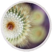 Round Beach Towel featuring the photograph Spiraling  by Ana Mireles