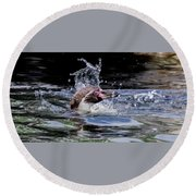 Splashing Humboldt Penguin Round Beach Towel