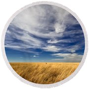 Splendid Isolation Round Beach Towel