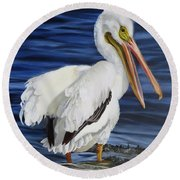 Splendor At Half Moon Island Round Beach Towel
