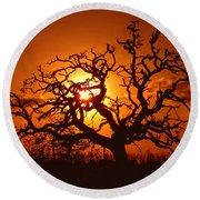 Spooky Tree Round Beach Towel by Stephen Anderson