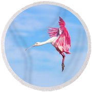 Spoonbill Ballet Round Beach Towel by Mark Andrew Thomas