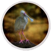 Round Beach Towel featuring the photograph Spoonbill by Lewis Mann