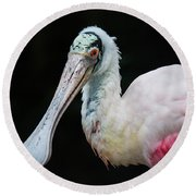 Round Beach Towel featuring the photograph Spoonbill by Lisa L Silva