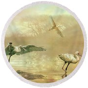 Spoonbill Morning Round Beach Towel by Brian Tarr