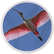 Spoonbill Soaring Round Beach Towel