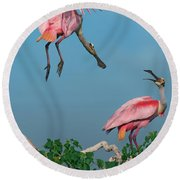 Spoonbills Greeting Round Beach Towel