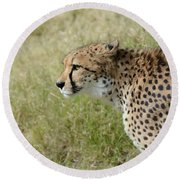 Round Beach Towel featuring the photograph Spotted Beauty 3 by Fraida Gutovich