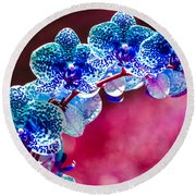 Spotted Blue Orchid  Round Beach Towel