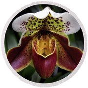 Spotty Orchid Round Beach Towel