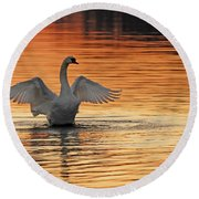 Spreading Her Wings In Gold Round Beach Towel