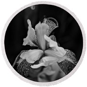 Round Beach Towel featuring the photograph Spring 2016 20 by Cendrine Marrouat