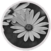 Round Beach Towel featuring the photograph Spring 2016 27 by Cendrine Marrouat