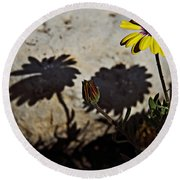 Round Beach Towel featuring the photograph Spring 2016 31 by Cendrine Marrouat