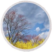 Round Beach Towel featuring the photograph Spring 2017 by Bill Wakeley