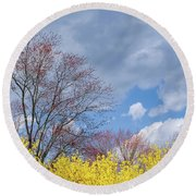 Round Beach Towel featuring the photograph Spring 2017 Square by Bill Wakeley