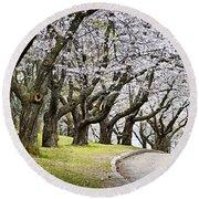 Spring Apple Orchard Round Beach Towel