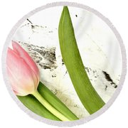Round Beach Towel featuring the photograph Spring Awakes by Marsha Heiken