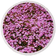 Blooming Spring Round Beach Towel