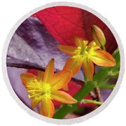 Spring Blossoms 2 Round Beach Towel by Stephen Anderson