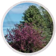 Round Beach Towel featuring the photograph Spring Blossoms by Paul Freidlund