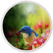 Spring Blue Jay Round Beach Towel