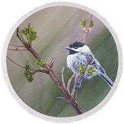 Spring Chickadee Round Beach Towel by Wendy Shoults