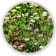 Spring Daisy Trails Round Beach Towel