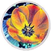 Round Beach Towel featuring the photograph Spring Flower Bloom by Derek Gedney