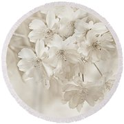 Round Beach Towel featuring the photograph Spring Flower Blossoms Soft Brown by Jennie Marie Schell