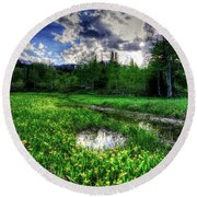 Round Beach Towel featuring the photograph Spring Flowers by Bryan Carter