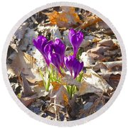 Spring Gathering Round Beach Towel