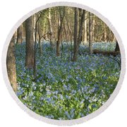 Round Beach Towel featuring the photograph Spring by Heidi Poulin