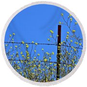 Spring In The Country Round Beach Towel