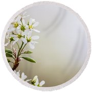 Spring Is Bursting Out All Over Round Beach Towel