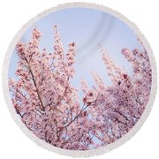 Round Beach Towel featuring the photograph Spring Is In The Air by Ana V Ramirez