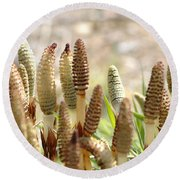 Round Beach Towel featuring the photograph Spring Macro4 by Jeff Burgess