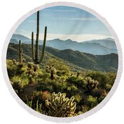 Round Beach Towel featuring the photograph Spring Morning In The Sonoran  by Saija Lehtonen