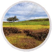 Round Beach Towel featuring the photograph Spring On North Table Mountain by James Eddy