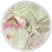 Spring Pastels Round Beach Towel by Jenny Rainbow