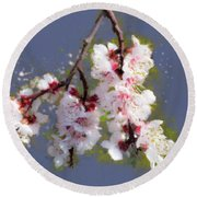 Spring Promise - Apricot Blossom Branch Round Beach Towel