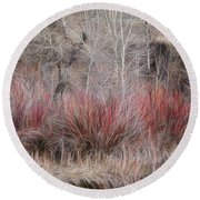 Round Beach Towel featuring the photograph Spring Red Bushes by Yulia Kazansky