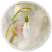 Spring Snowdrops And Bokeh Round Beach Towel by Peggy Collins