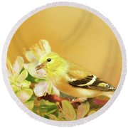 Spring Song Bird Round Beach Towel