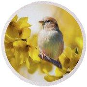 Spring Sparrow Round Beach Towel