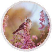 Round Beach Towel featuring the photograph Spring Sparrow by Lynn Bauer